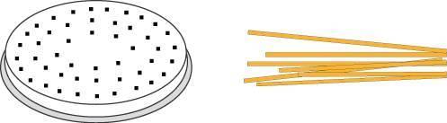 Matrize Nudelmaschine für Spaghetti Chitara
